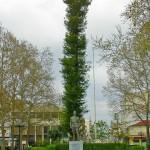 Άγαλμα Ασκληπειού, Τρίκαλα