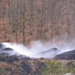 Παραγωγή Κάρβουνου, Καστοριά
