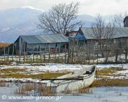 Φλώρινα:  Απέραντα δάση, επιβλητικά βουνά και πανέμορφες λίμνες