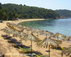Σποράδες: Πλούσια βλάστηση και υπέροχες παραλίες
