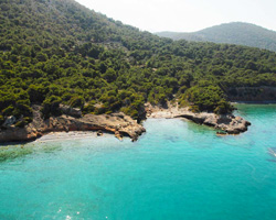 Agistri: Pine forests embrace with picturesque beaches
