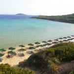 Παραλία Χρυσή Άμμος, Άνδρος